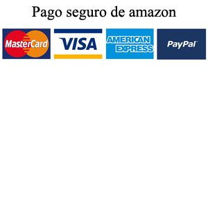 web con pago seguro